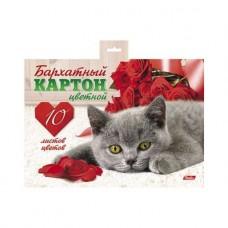Бархартный картон. HATBER. А5. 10 листов. 10 цветов. Котенок