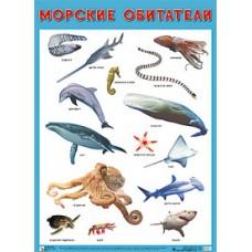 Морские обитатели. Плакат. 500x690 мм