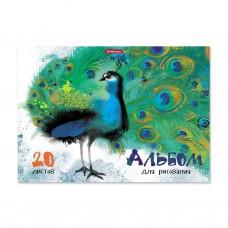 Альбом для рисования. ErichKrause. ArtBerry. Птицы жарких стран. А4. Клеевое скрепление. 20 листов