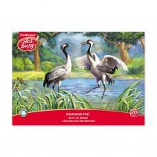 Альбом для рисования. ErichKrause. ArtBerry. Экзотические птицы. А4. Клеевое скрепление. 20 листов