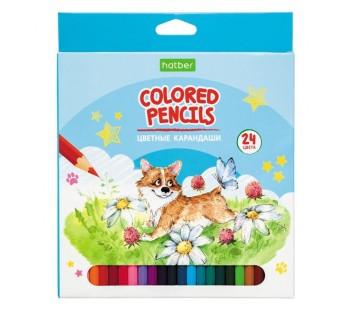 Карандаши цветные. Hatber. Pets story. 24 цвета. С заточкой