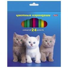 Карандаши цветные. Hatber. Любимцы . 24 цвета. С заточкой. В картонной коробке с европодвесом