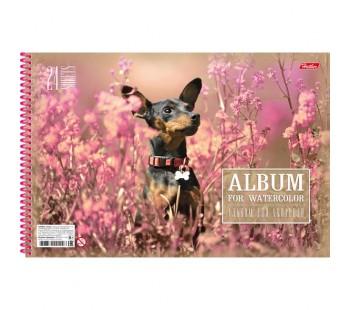 Альбом для рисования. Hatber. А4. 24 листа на пластиковой спирали. Розовая мечта