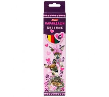 Карандаши цветные. Hatber. Мягкие и пушистые. 6 цветов. С заточкой. В картонной коробке с европодвесом