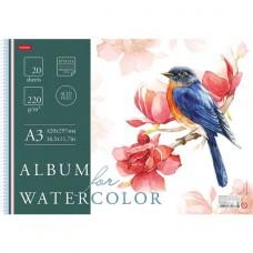Альбом для рисования акварелью. Hatber. 20 листов. А3. На пластик.спирали. Рисуем акварелью