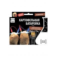 Картофельная батарейка. Набор для опытов