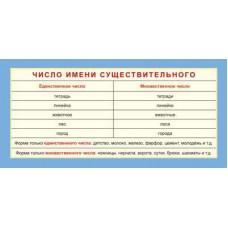 Карточка. Число имени существительного. ШМ-13218