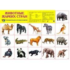 Животные жарких стран. Демонстрационный плакат. Формат А2