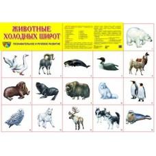 Животные холодных широт. Демонстрационный плакат. Формат А2
