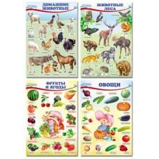 Домашние, лесные животные, фрукты и ягоды,овощи. Комплект познавательных мини-плакатов