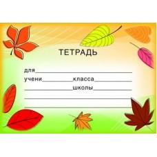Наклейки на тетради. ШН-8117