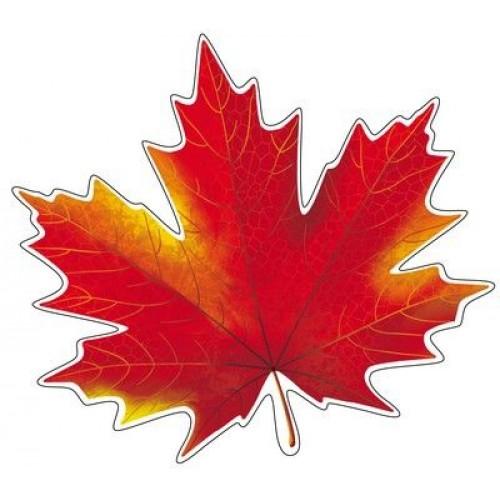 Листья осени картинки цветные