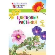 Цветковые растения. Иллюстрированная энциклопедия школьника